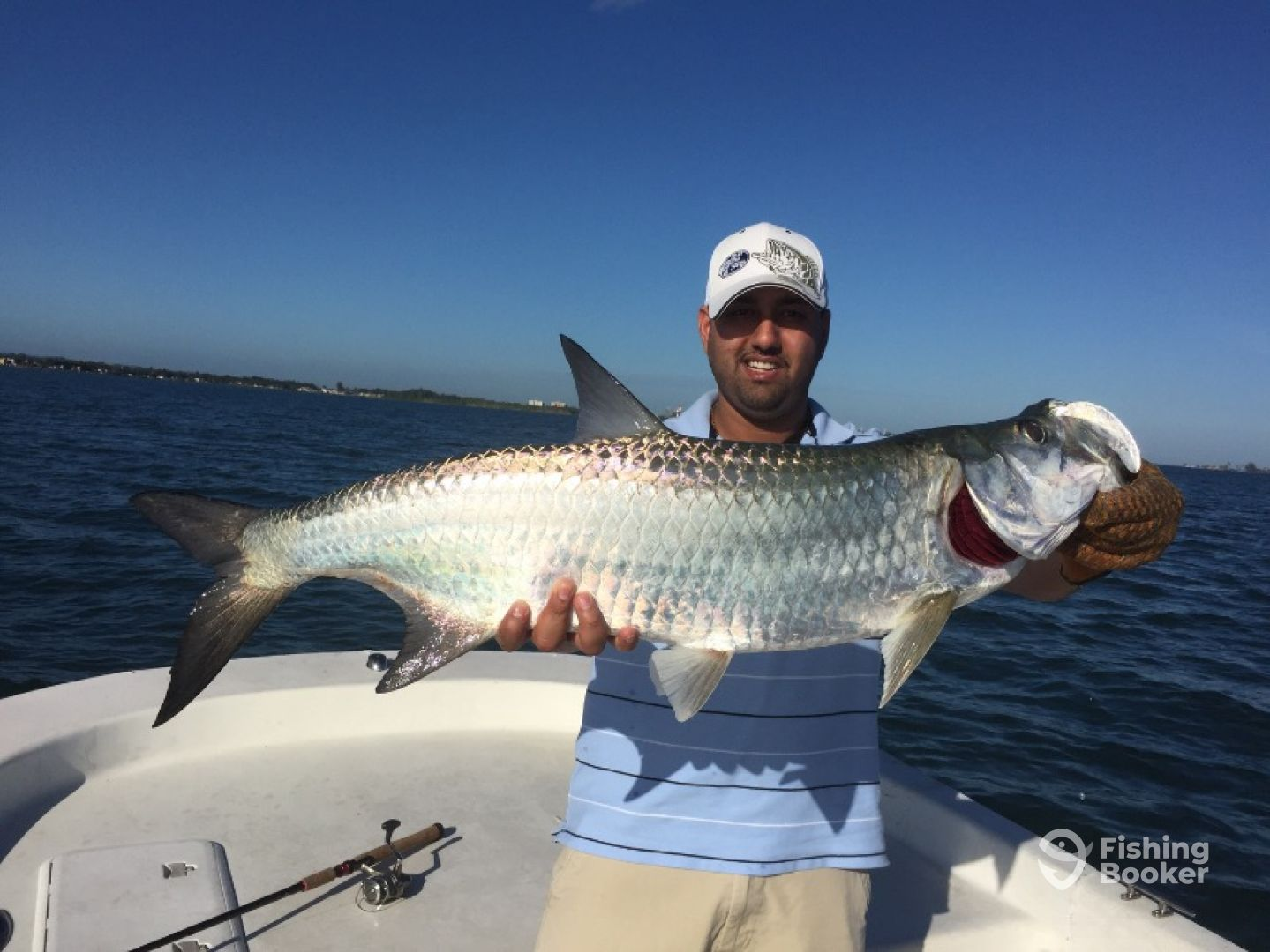 Tarpon Fishing in Puerto Rico