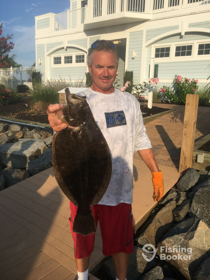 Flounder from 7/29