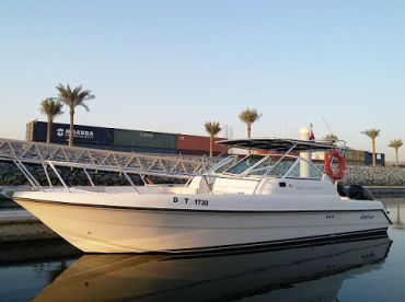 King Fisher Tours – 31'