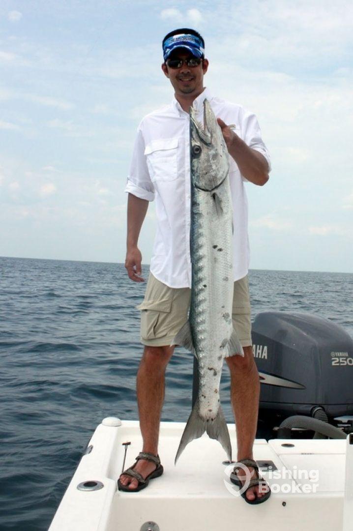 Laylow in bimini fishing guide bailey town bahamas for Bimini fishing charters