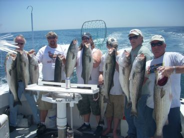 Reel To Reel Sportfishing Llc