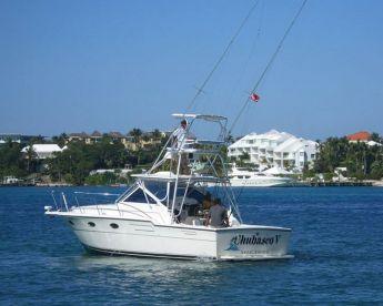 Chubasco V - 36' Tiara Yacht