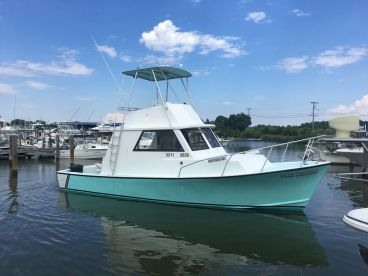 U.S. Blues Chesapeake Charters