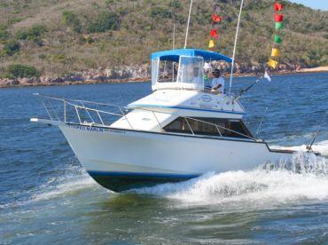 Escualo Fleet - Striped Marlin 34'