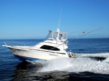 JPH Charters - Gamefisher 4