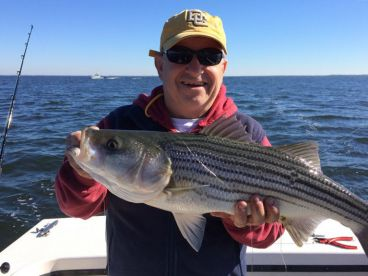 Downtime sportfishing charters annapolis md fishingbooker for Annapolis fishing charters