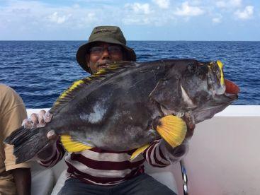 Skull Fishing - Alif Atoll