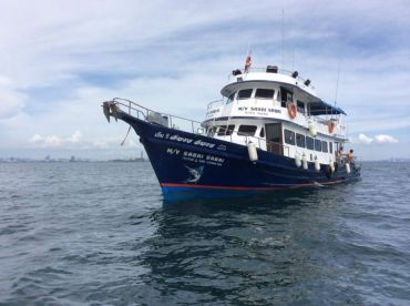 Sabai Sabai Cruising & Fishing Tours
