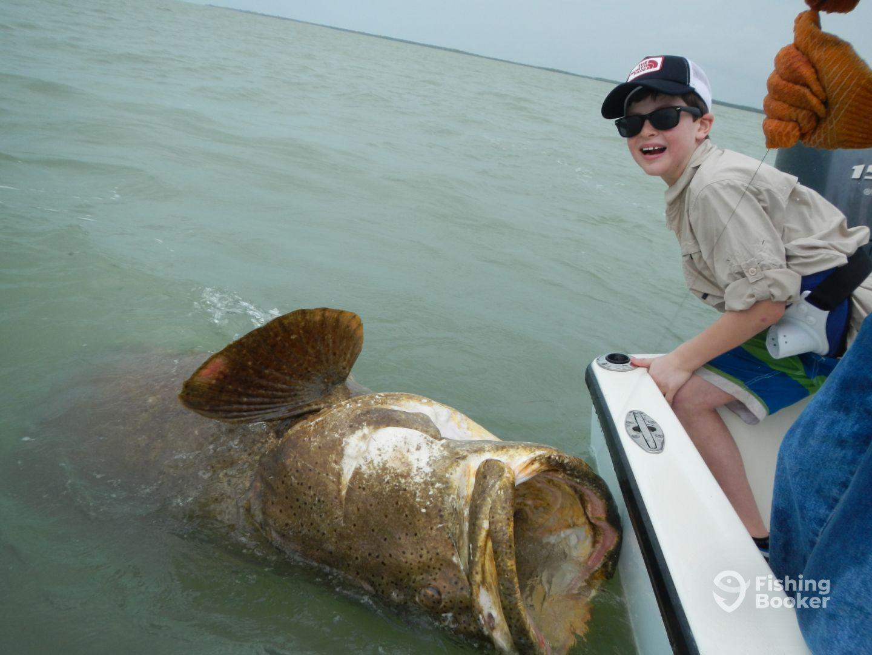 Est. 500 lb goliath grouper caught by 2 kids