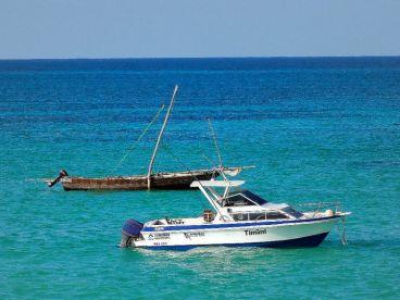 Zanzibar Big Game Fishing - Timimi