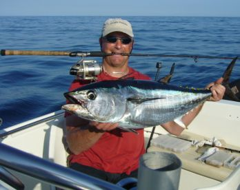 Best season for Tuna is from springtime until late october.