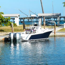 Reel  Therapy Fishing Charters