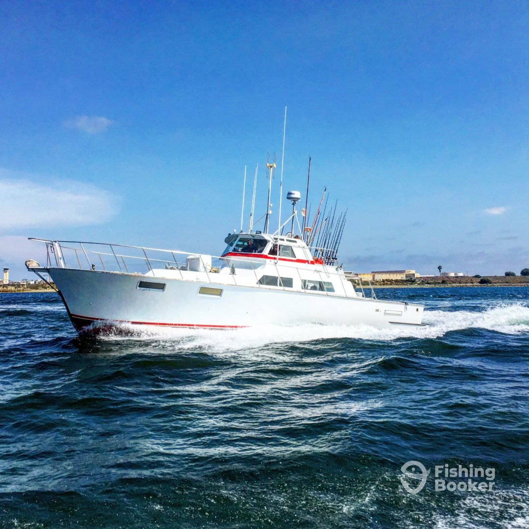 I just found Jackpot Charters on FishingBooker