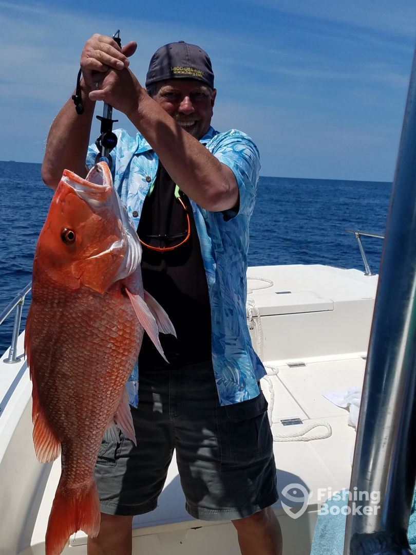 Huge red snapper!!!  Well be back for him in july.