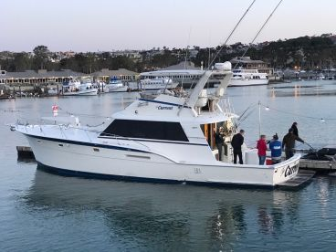 Dana Wharf Sportfishing - Current