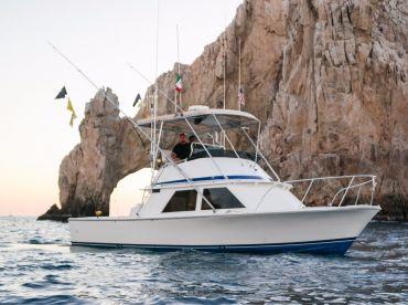 Capt. Edgardo - Blackfin 33'