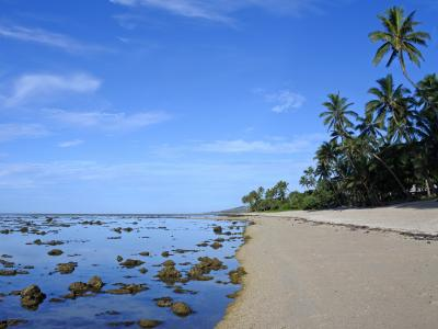 Коралловое побережье