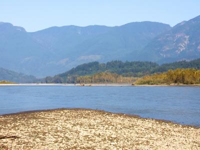 Фрейзер (река)
