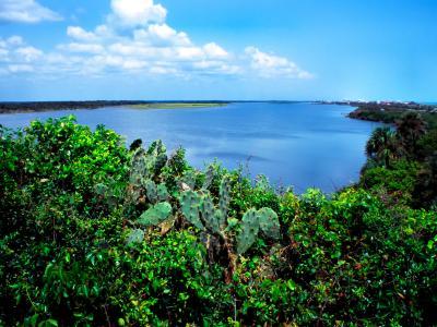 Mosquito Lagoon