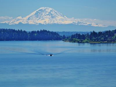 Top 10 Washington, United States Fishing Charters for 2019