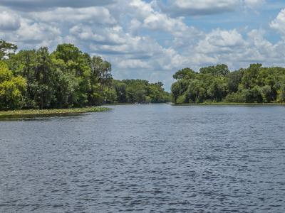 Сент-Джонс (река)