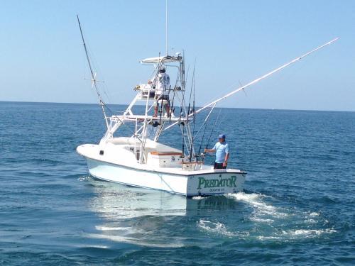 Predator Sportfishing S.A
