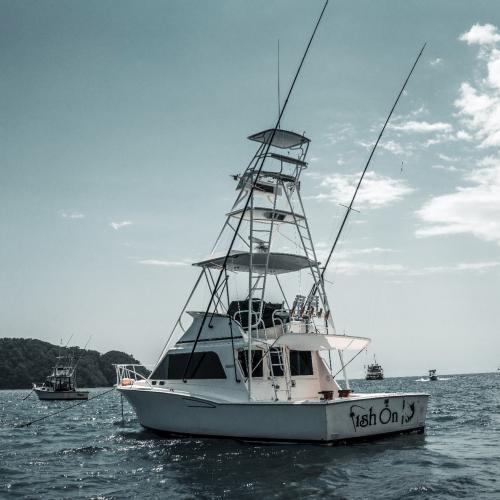 Fish On Sportfishing