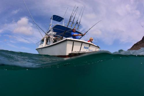 Fish Charter Curacao