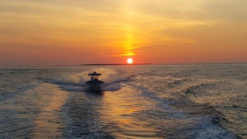 Carolina Flare Sportfishing