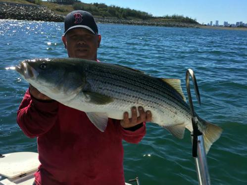 Sos Fishing Charters Boston Llc.