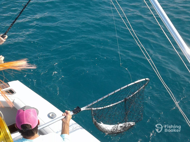 Spanish king mackerel college send off aransas pass for Aransas pass fishing