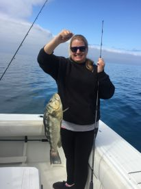 Fishing reports by black and blue sportfishing dana for Dana point fish report