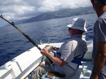 Funchal Report Photo 4