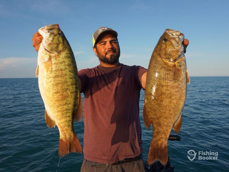 Lake St Clair BASS MEGA Bite! - Lakeshore Fishing Report