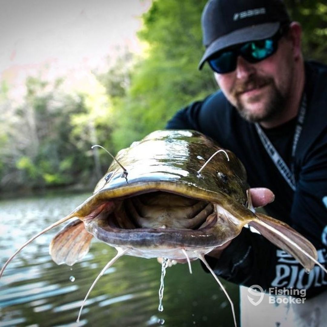 Carters Lake Ga Oct Ellijay Fishing Report Fishingbooker