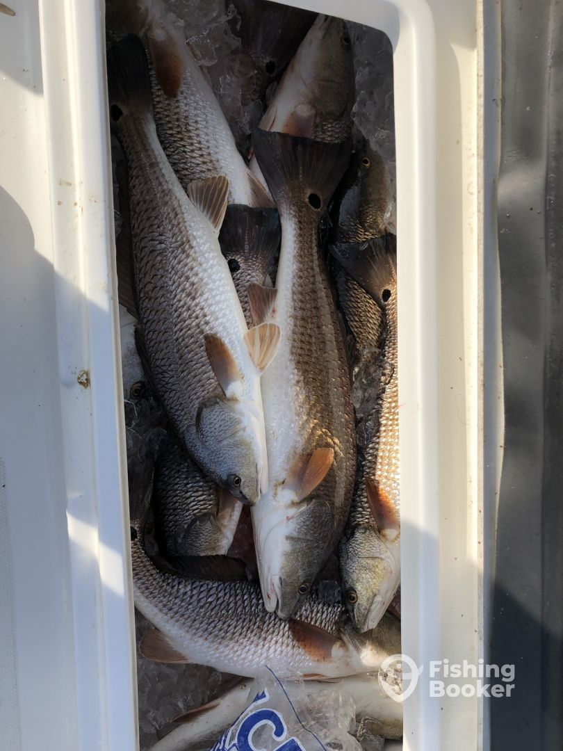 January scout trip for redfish.