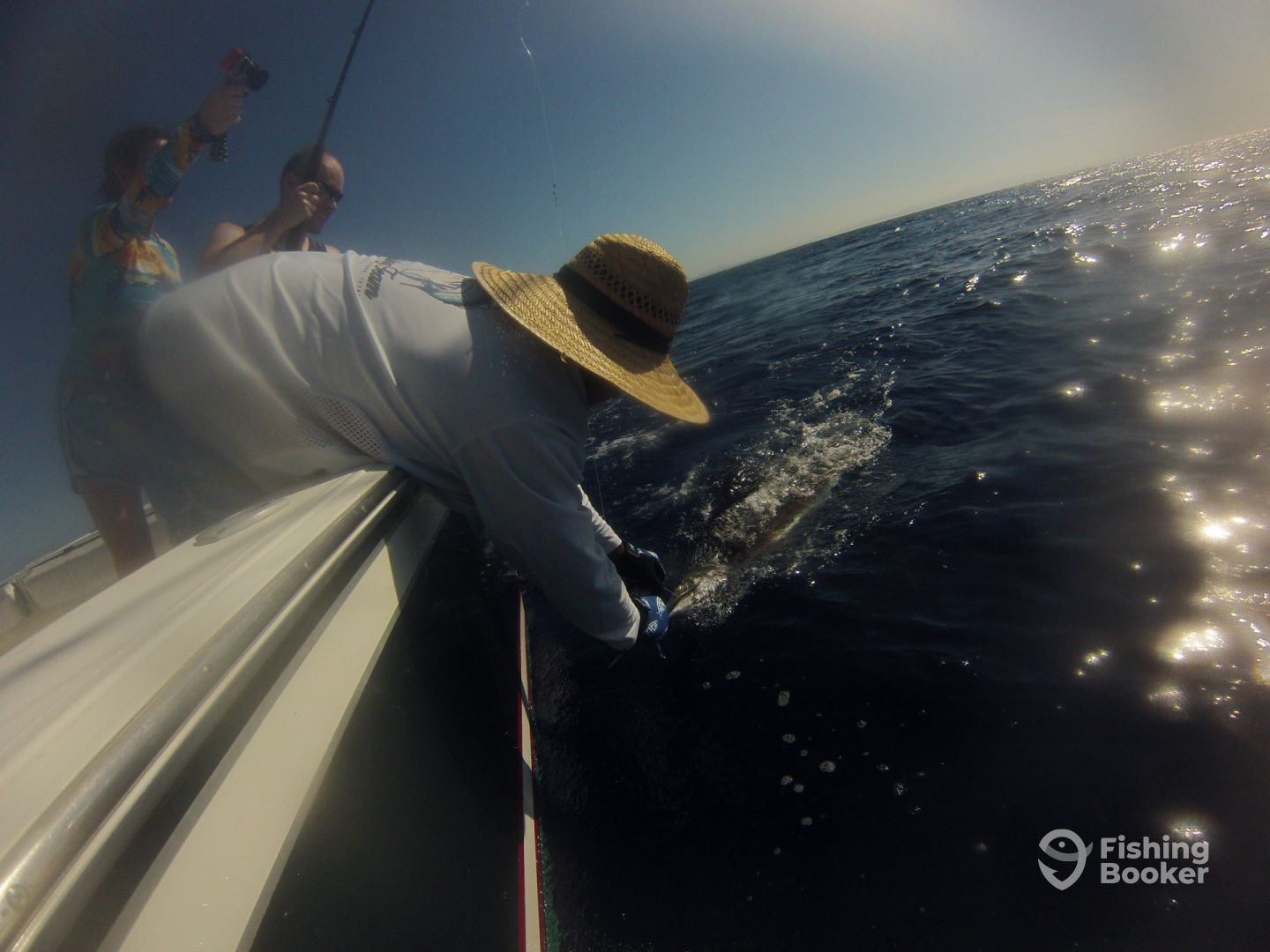 Carlos getting the sailfish close
