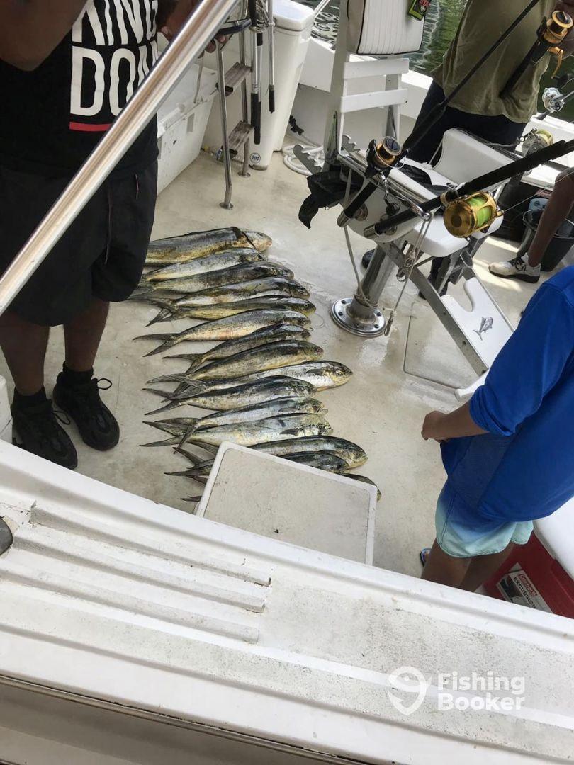 Trinidad and Tobago Report Photo 1