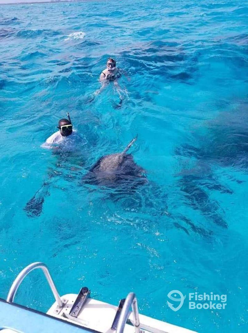 Cayman Islands Report Photo 1