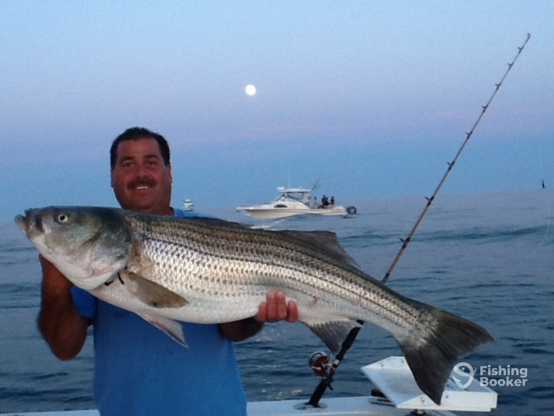 FULL MOON STRIPED BASS - Montauk Fishing Report - FishingBooker