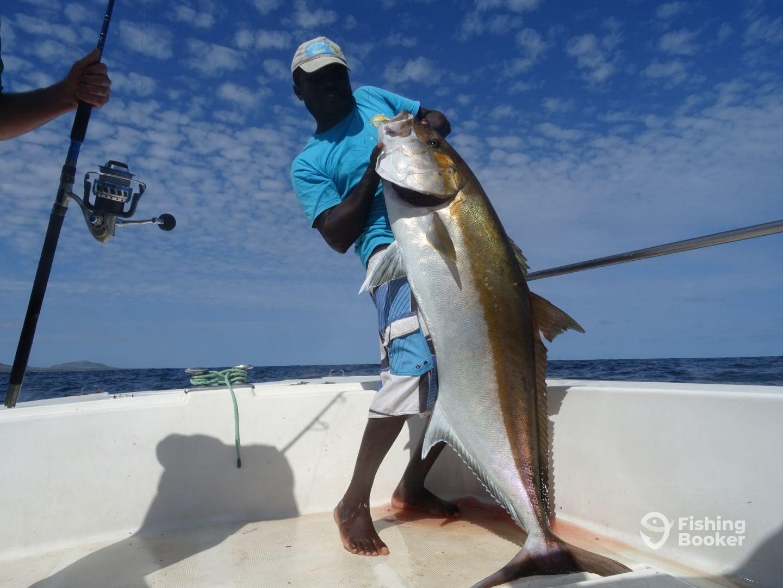 Cape Verde Report Photo 0
