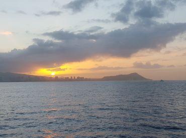 Honolulu Report Photo 2