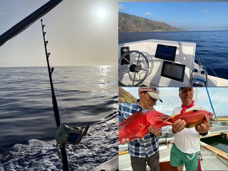Madeira Report Photo 2