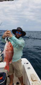 Apalachicola Report Photo 1