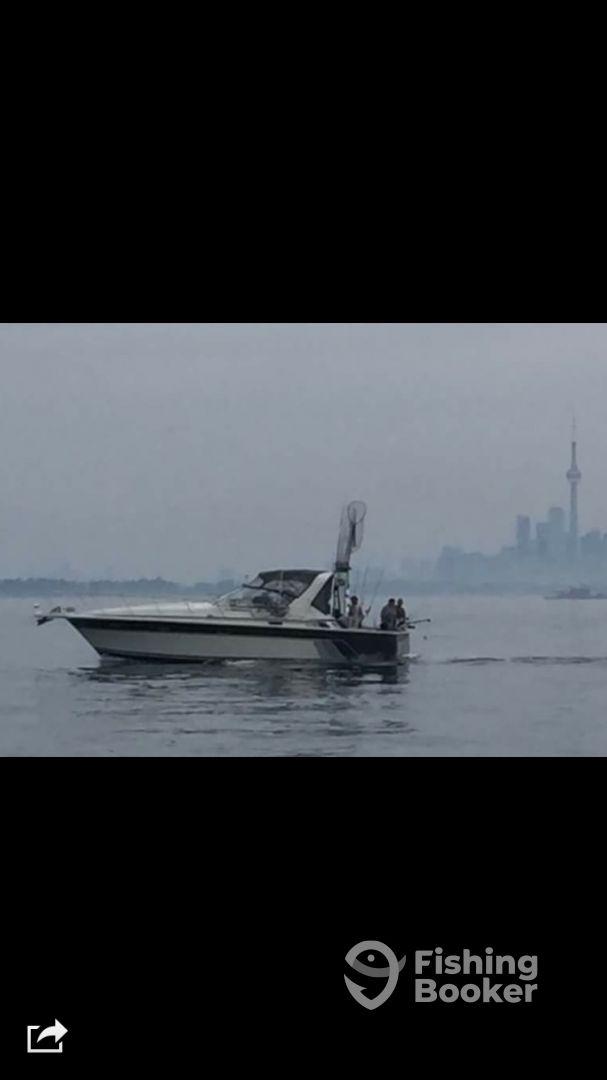 Ontario Report Photo 2