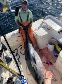 Cape Cod Report Photo 2