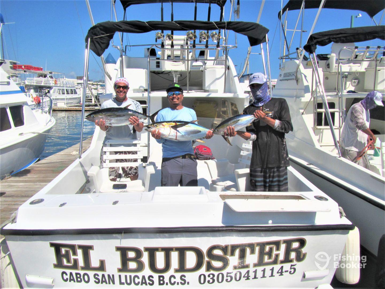 Baja California Sur Report Photo 4