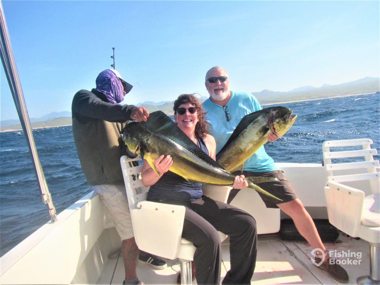 Baja California Sur Report Photo 2