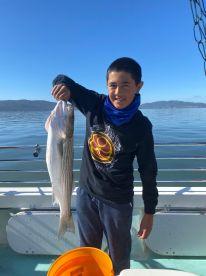 San Pablo Bay Report Photo 2