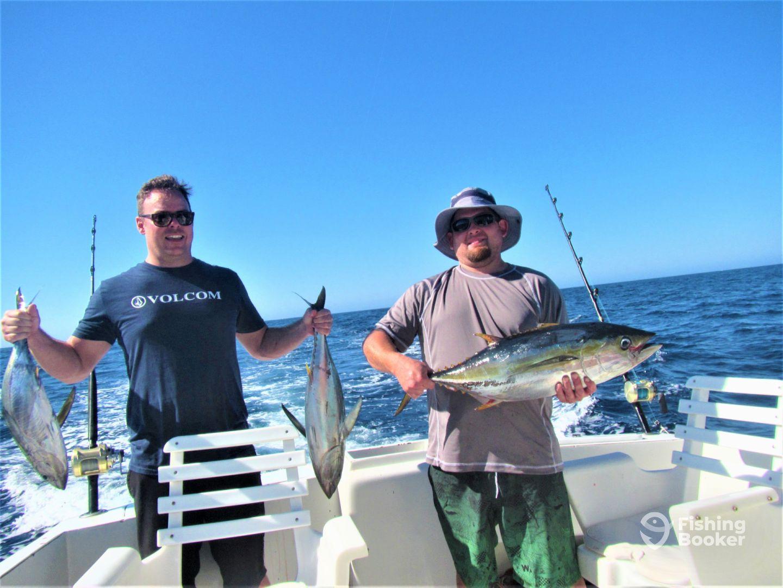 Cabo San Lucas Report Photo 1